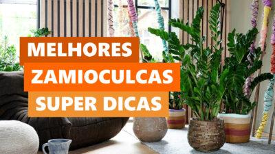 blog-post-dicas-da-lolafa-104