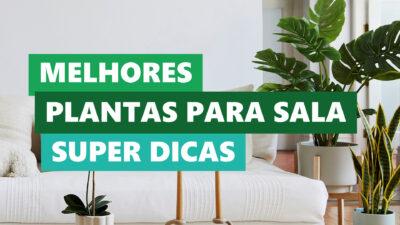 blog-post-dicas-da-lolafa-136